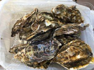 ひろちゃん牡蠣