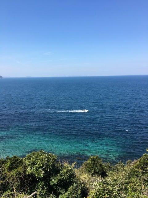 糸島市トトロの森の展望台からの光景