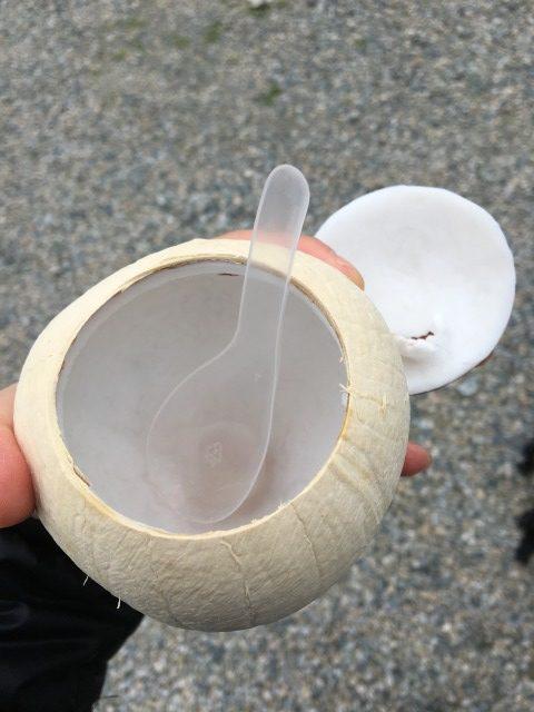 ナムホン・ココナッツの果肉