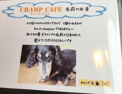 CHAMP CAFEの由来