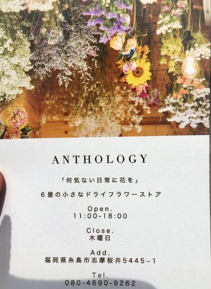 アンソロジーのポストカード
