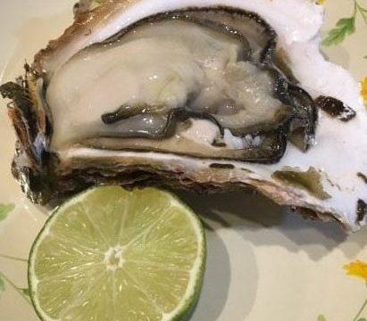 糸島の岩牡蠣とライム