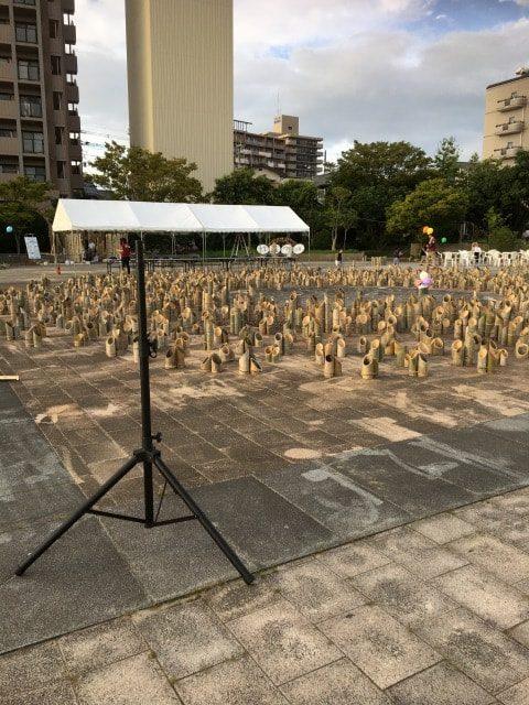 糸島市の放置竹林