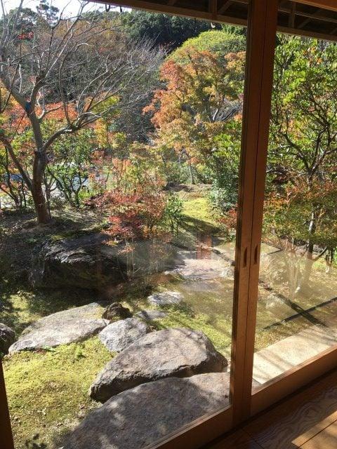 糸島ヤギ牧場の内観から見る紅葉