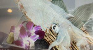 塚本鮮魚店のイカの活け作りの画像
